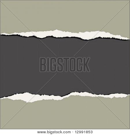 Riss Papier