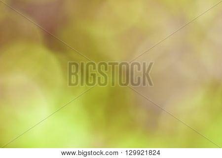 Abstract image, the soft bokeh, natural bokeh, blurred bokeh.