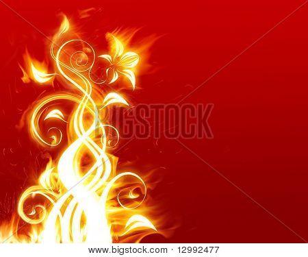 Flor em chamas