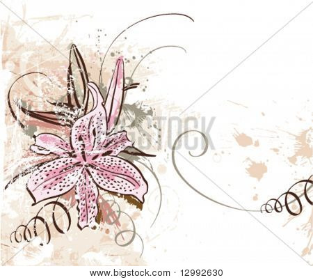 Lily. Vector grunge floral background. See similar pictures in my portfolio.