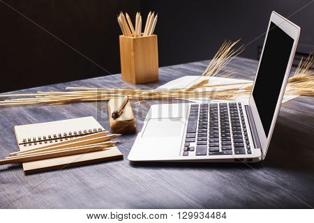 Creative designer desktop with blank laptop screen stationery and wheat spikes. Side view Mock up