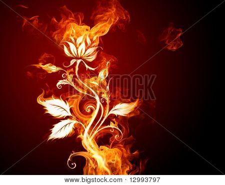 Burning flower