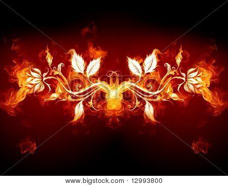 Flor ardente