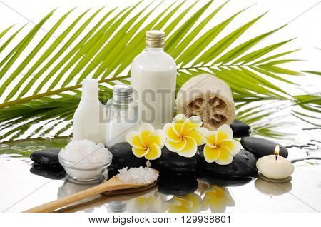 frangipani ,palm and black stone, candle on wet background
