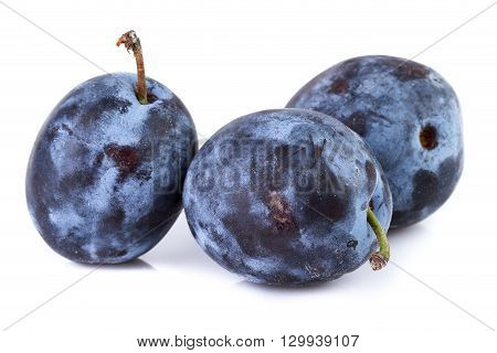 Ripe plums in closeup on white. Organic fruits.