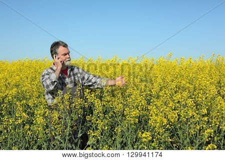 Farmer Or Agronomist In Blossoming Rapeseed Field