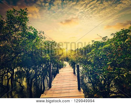 Tropical Cambodia exotic vacation holidays travel concept -  retro effect hipster filtered  image of wooden bridge in flooded rain forest jungle of mangrove trees near Kampong Phluk village, Cambodia