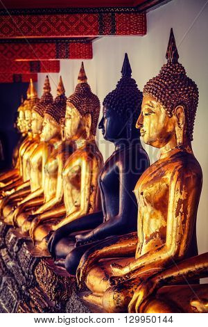 Travel Thailand Buddhism religion - vintage retro effect filtered hipster style image of sitting Buddha statues in Buddhist temple