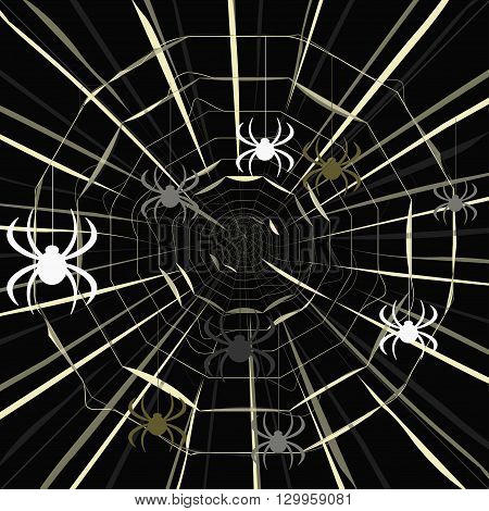 Colored Spider On A Spider Web Pattern On A Dark Background. Vector Illustration