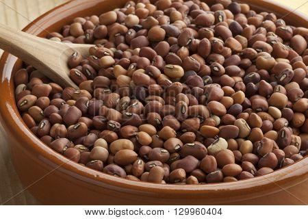 Dried Jarpesie beans in a bowl