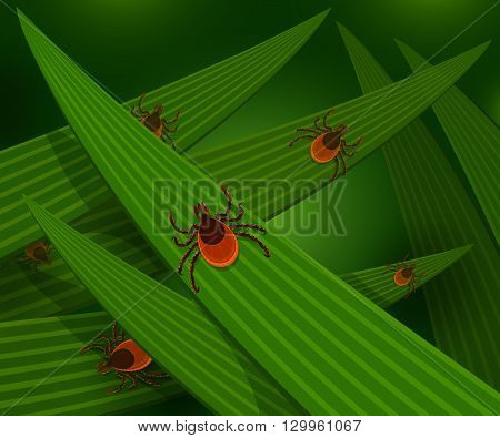 Mites in the tall green grass flat vector illustration, mites hiding in the grass, tick-borne mites color icons, danger ticks bugs in nature grass