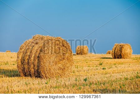 Summer Autumn Rural Landscape Field Meadow With Hay Bales After Harvest Under Sunset Light. Late Summer, August Month