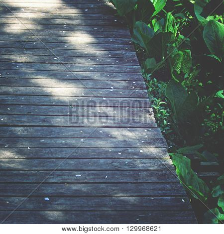 Weathered wood walkway into the woods background/frame