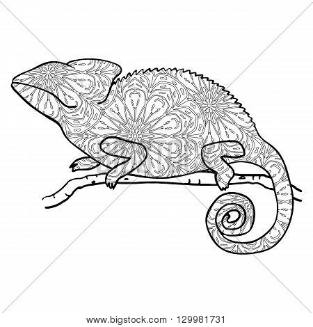 Zentangle style chameleon. Stylized vector animal isolated on white. Hand drawn chameleon with round mandala pattern. Antistress coloring page with lizard