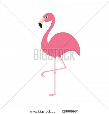 Pink flamingo on one leg. Exotic tropical bird. Zoo animal collection. Cute cartoon character. Decoration element. Flat design. White background. Isolated. Vector illustration