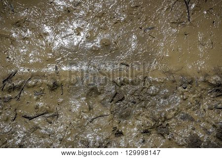 Texture of mud. Wet dirt. Puddle. Dirty style for background.