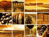 stock photo of sparkling wine  - abstract montage of all things wine related - JPG