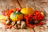 stock photo of fall leaves  - Harvested pumpkins with fall leaves - JPG