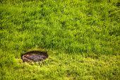 water drain metal rusty hatch on green grass field. water drain drainpipe system poster