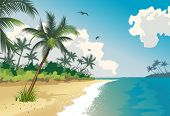 stock photo of tropical island  - Tropical beach - JPG