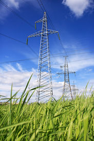 picture of power lines  - Power Line - JPG
