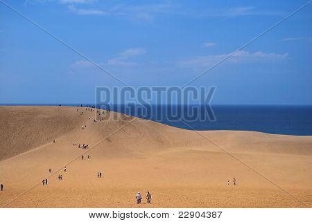 Desert Dunes Overlooking Sea