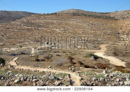 Sanctuary Shiloh