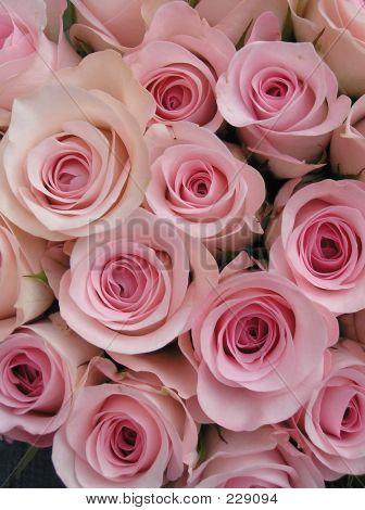 Sweet&pink