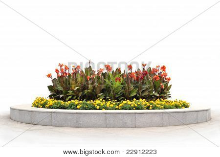 The flower-bed with red and yellow flowers