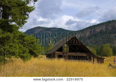 Old Barn In Golden Field