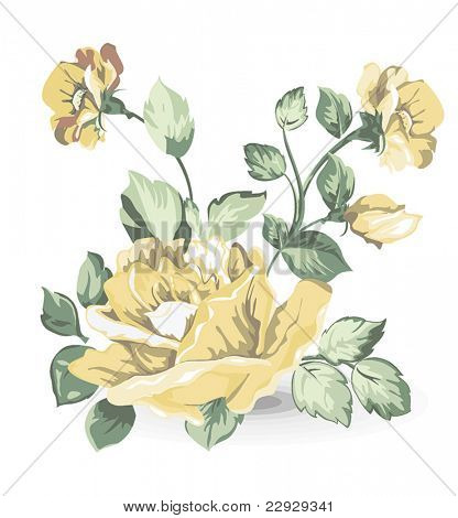 Elegance illustration with different flowers bouquet isolated on white background. Color design elements.