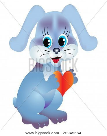 Rabbit Keeps Heart Is Isolated