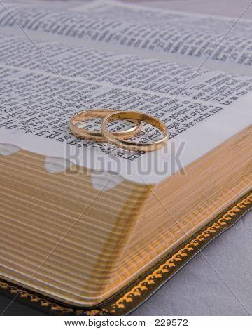 Anillos de la Biblia