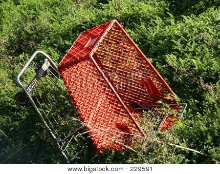 Abandoned Cart, Close View