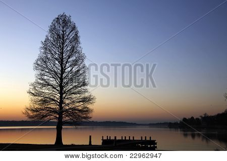 Tree and dock silhouette over lake at sunset