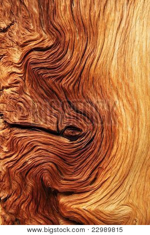 Contorted Wood Grain