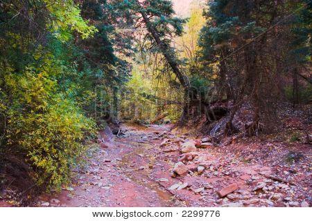 Lecho del río seco en el Parque Nacional de Zion