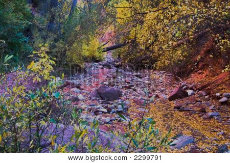 Herbst Riverbed
