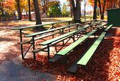 Bleacher In Autumn