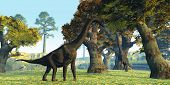 stock photo of behemoth  - Two Brachiosaurus dinosaurs walk among large trees in the prehistoric era - JPG