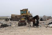 Horse Mounted On A Scavenger Cart And A Broken Waste Compactor In A Landfill Site poster