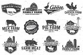 American Farm Badge Or Label. Vector Illustration. Vintage Typography Design With Chicken, Pig, Turk poster