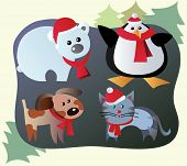 Winter Pets And Animals poster