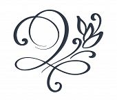 Flourish Swirl Ornate Decoration For Pointed Pen Ink Calligraphy Style. Quill Pen Flourishes. For Ca poster