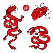 Dragon Set. Symbol Of China. Traditional Chinese Red Dragon. Chinese Dragon Logo.(chinese Translatio poster