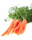 image of crudites  - Bundle of fresh carrots - JPG
