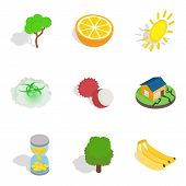 Natural Recovery Icons Set. Isometric Set Of 9 Natural Recovery Vector Icons For Web Isolated On Whi poster