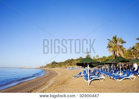 Tumbonas en la playa de Sandy en Marbella