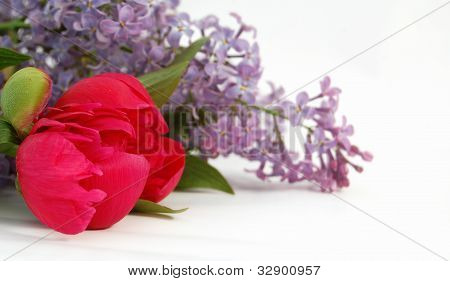 Lilac flower,red,