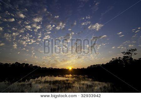 Sunset Swamp